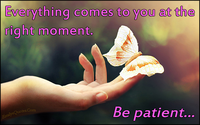 Com-right-moment-wait-patient-life-inspirational-advice-unknown1
